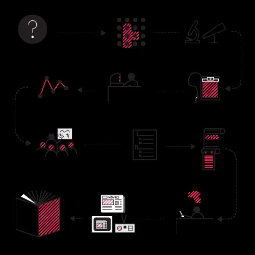 Timeline of PAR Project